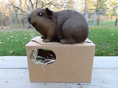 GUINEA PIG FIGURINE 9.25 IN.animal resin box fake straw PET  Dark Brown New