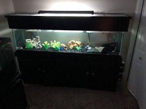140G tank complete with everything