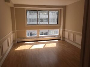 1-1/2 apartment for sublease