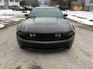 LOOKING FOR 2010-2012 MUSTANG GT FRONT AND REAR BUMPERS