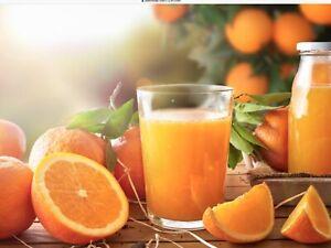 Valencia Orange Seedless Glenorie The Hills District Preview