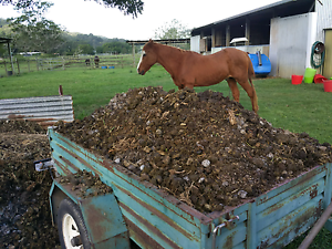 Trailer load of Horse Poo Manure for Gardens and Compost Bins. Maroochydore Maroochydore Area Preview