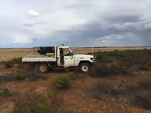 Swap for duel cab ute. Dongara Irwin Area Preview