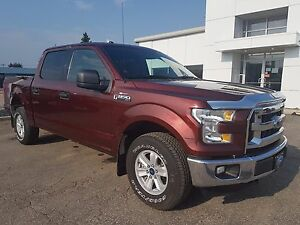 2015 Ford F-150 XLT Crew Cab, 6-Passenger, Cruise Control, Bl...