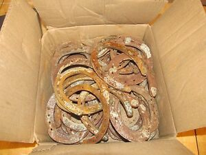 Used horseshoes metalworking ebay for Where to buy horseshoes for crafts