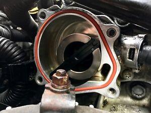 VW Volkswagen Vacuum Pump Gasket 2.5L Jetta, Beetle, Golf, Passat MKV Orange