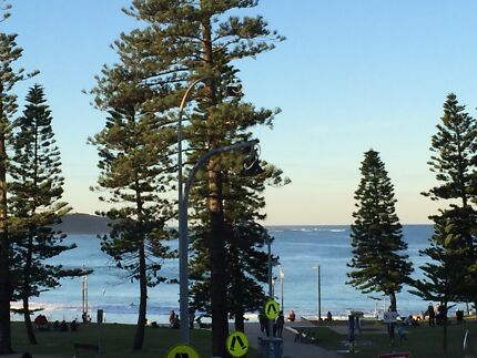 Ocean view - Dee Why Beach Dee Why Manly Area Preview
