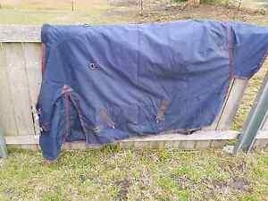 5'9 Eurohunter True Blue Rug Sorell Sorell Area Preview