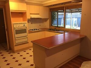 Complete kitchen with appliances Aspendale Gardens Kingston Area Preview