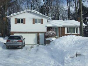 Maison - à vendre - Trois-Rivières - 19728705