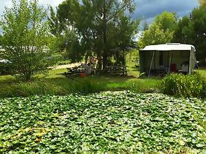 Rural property, chemical free, permaculture, propagation nursery, Inverell Inverell Area Preview