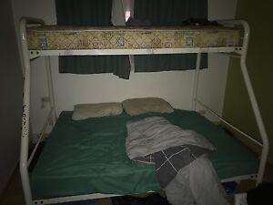 Bunk bed Bundoora Banyule Area Preview