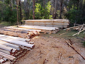 Building timber Lebrina Launceston Area Preview