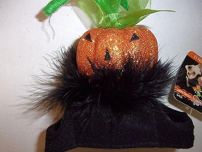 GLITTER Pumpkin HAT Dog Halloween M/L Wag-a-tude new pet puppy cat cap head - A Halloween Puppy