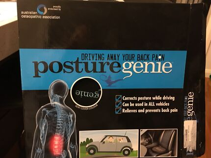 Back support - 'Posture Genie'