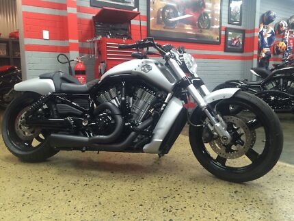 Harley Davidson VROD Muscle - CUSTOM HEAD TURNER Bassendean Bassendean Area Preview