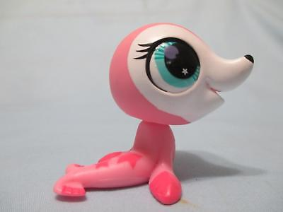 Littlest Pet Shop Seal Pink Pink White 2686 Authentic Lps