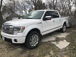 2013 Ford F-150 Platinum with Rare 6.2L