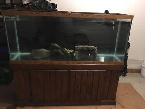 120 gallon aquarium