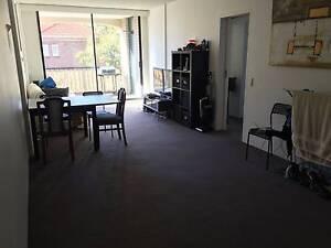 Room for Rent in Sunny Bondi Junction Apartment Bondi Junction Eastern Suburbs Preview