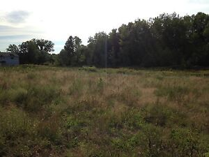 Beautiful 5 Acre lot with woods and field by Trent River Belleville Belleville Area image 7