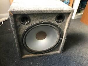 Speaker in Homemade Case