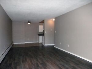 Newly renovated suites, Move in ready