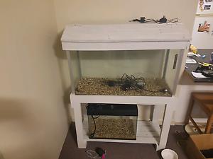 3 foot fish tank Parramatta Parramatta Area Preview