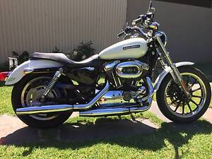 2007 Harley Davidson Sportster, pearl colour, great condition Joslin Norwood Area Preview