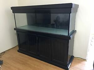 Fish Tank With Stand Rosebery Inner Sydney Preview