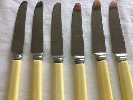 Vintage Bone Handled Knives (6)