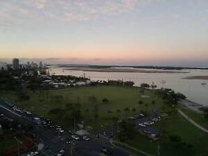 AMAZING 14th FLOOR  BROADWATER SEA AND OCEAN VIEWS Southport Gold Coast City Preview