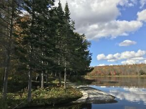 6 Acres of Rustic Beauty in the Almaguin Highlands