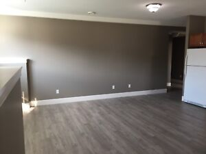 3 bedroom very large lower level suite.