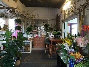 Retail Florist, Plant and Gift Shop Business for Sale Toukley Wyong Area Preview