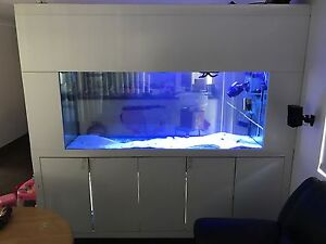 Marine fish tank Forrestdale Armadale Area Preview