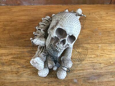 Bag of Bones Halloween 13 Pc Skeleton Skull Hands HYDE AND EEK! Haunted House