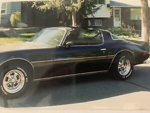 1981 Firebird for Sale