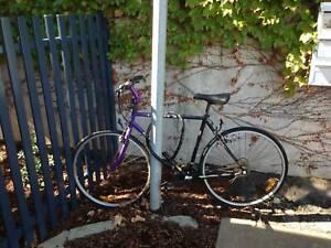 Mountain Bike (Giant) with heavy lock