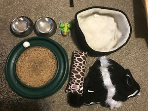 Cat toys, bed, and dishes