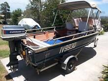 4.1m Freeboarder aluminium boat, tinny with 25hp Evinrude motor Little Mountain Caloundra Area Preview
