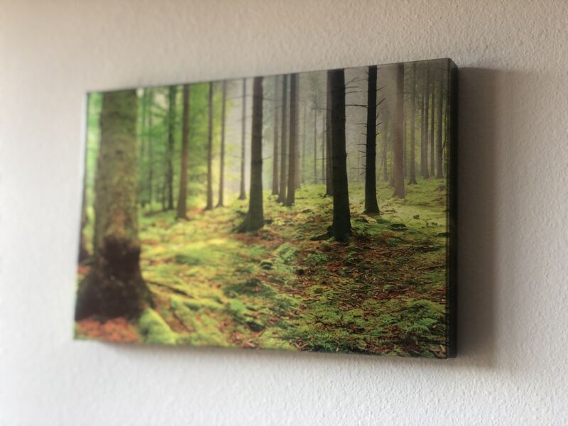 """Hanging Metal Wall Art Forrest 12""""x8"""""""