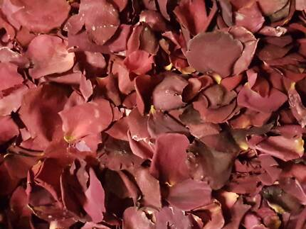 Freeze Dried Rose Petals. Perfect as wedding confetti &decoration