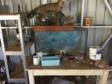 Fish tank damaged Bethania Logan Area Preview