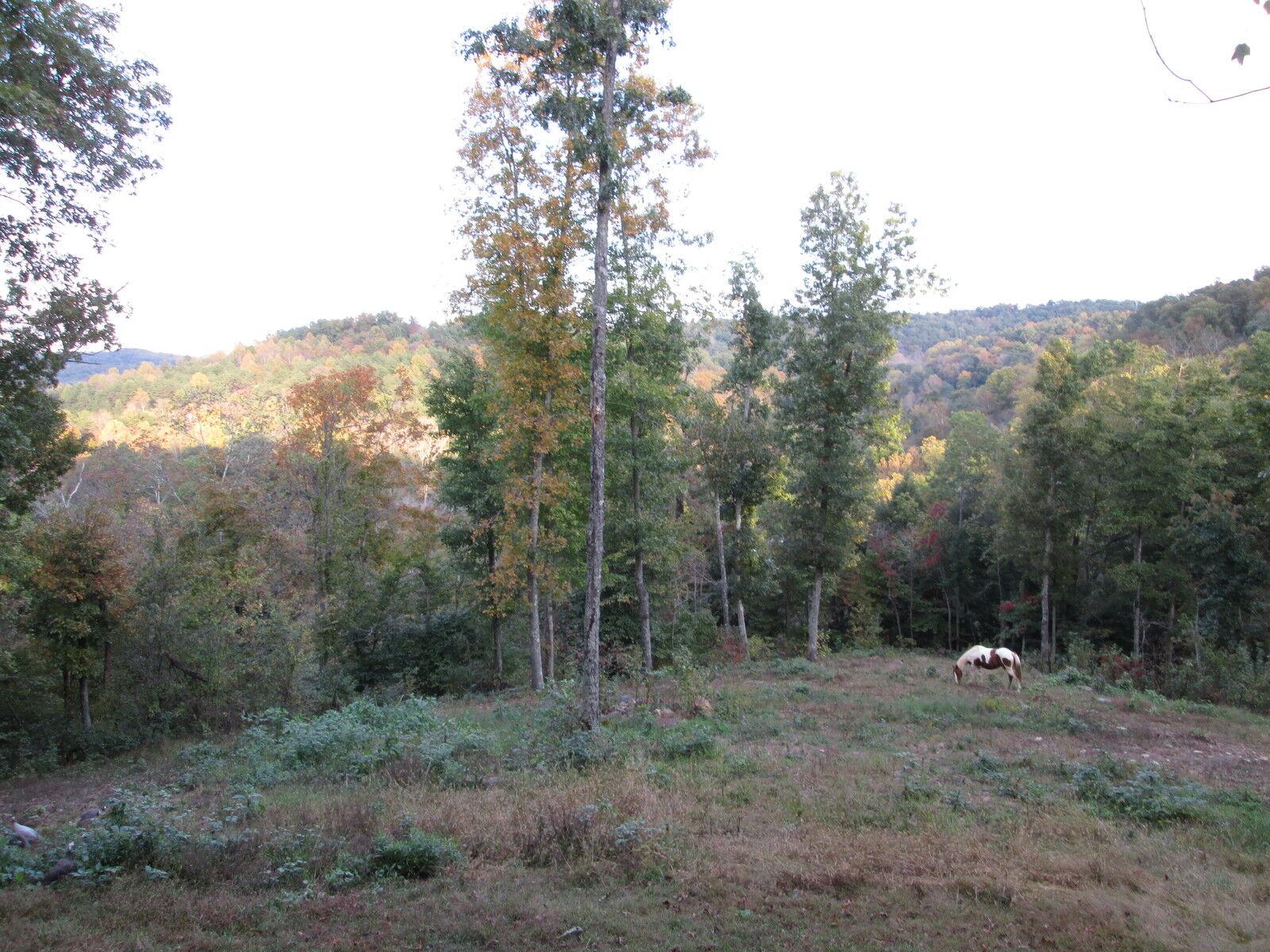Abundance Valley