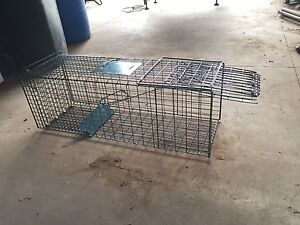 Animal trap Lakesland Wollondilly Area Preview
