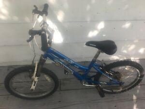 "20"" blue Youth bike"