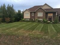 Lawncare and garden maintenance