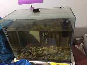 2 ft fish tank with rocks no leaks or cracks Wingham Greater Taree Area Preview