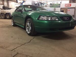 2001 Ford Mustang *in yorkton* Spring is here!